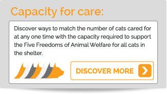 Capacity for Care. Discover ways to match the number of cats cared for at any one time...