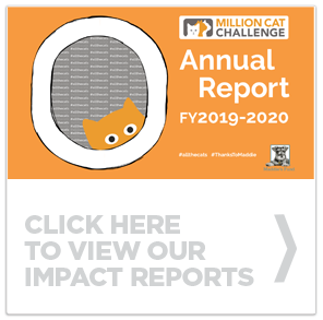 Click here to view our annual impact report for fiscal year 2019/2020