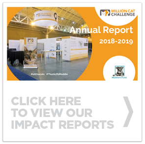 Click here to view the impact reports